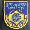 Gold Cup 2015 - I.K.O. Matsushima Championship in Montreal - Ashihara fighter brings gold. - последнее сообщение от kondak